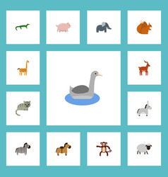 Flat icons swine camelopard chipmunk and other vector
