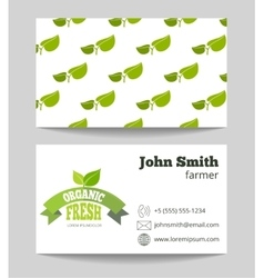 Organic fresh food farmer business card vector image