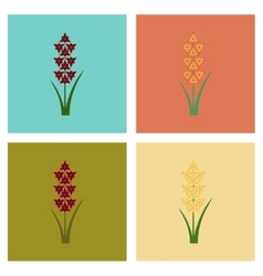 Assembly flat flower gladiolus vector