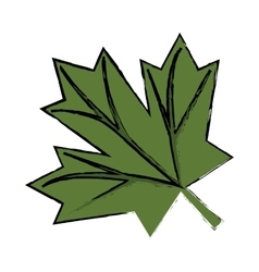 Maple leaf green sign canadian sketch vector