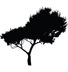 tree 2 - vector image vector image