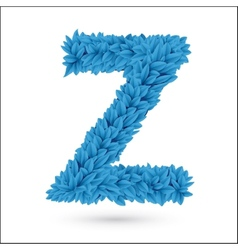 Z letter vector image vector image