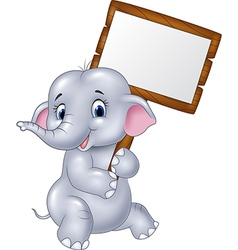 Cute baby elephant holding blank sign vector