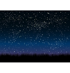 Silhouette grass Starry Sky Eps 10 vector image