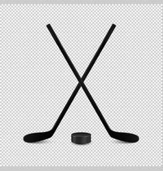 Sports set - two realistic crossed vector