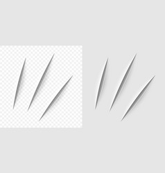 Realistic cut with a office knife vector