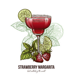 Strawberry margarita cocktail with berries vector