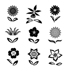 Flower icons set chamomile daisy orchid cloves vector