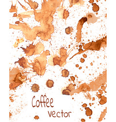 coffee paint splashes vector image vector image