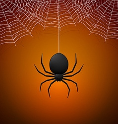 Spider and Cobwebs vector image vector image