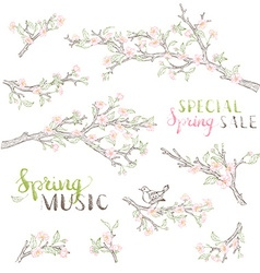 Set of spring branches in bloom vector