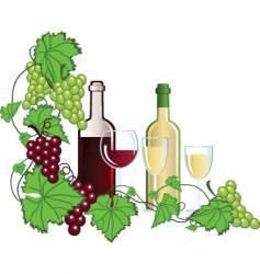 wine yard vector image