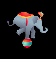 Circus trained wild animals performance vector