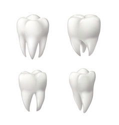 healthy teeth icon set for dentistry design vector image vector image