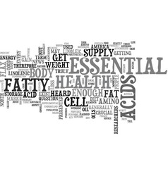 what is an essential fat text word cloud concept vector image vector image