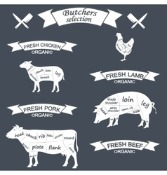 Diagram cut carcasses of chicken pig cow vector