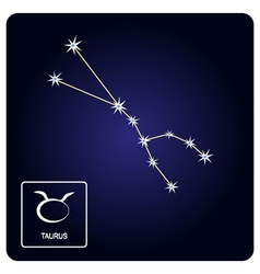 Icons with taurus zodiac sign and constellation vector