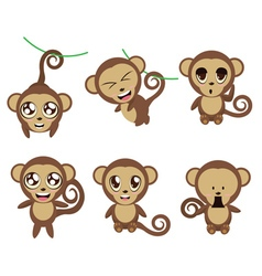Funny monkeys vector