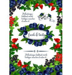 Poster of fresh berries and fruits vector