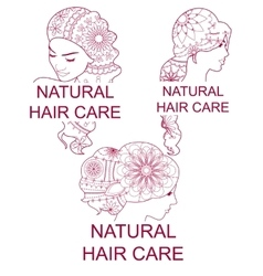 Set of natural hair care logos vector image vector image