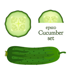 vegetable food set of cucumber and slices vector image