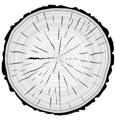 Tree rings saw cut tree trunk background vector