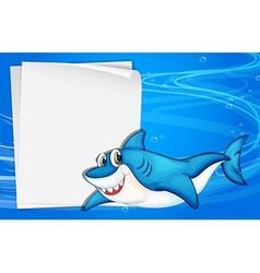An empty paper under the sea beside a shark vector image