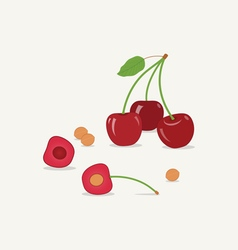 Cherries Flat Icon vector image vector image