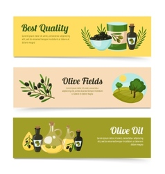 Olive Banners Set vector image vector image