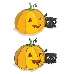 pumpkin and cat vector image vector image