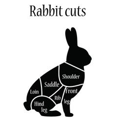 Rabbit butcher chart vector image vector image