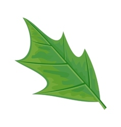 Green leaf in flat design vector