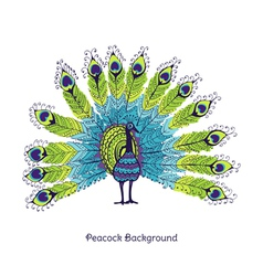 Peacock card vector