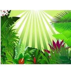 beautiful forest background vector image