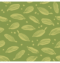 Green cardamom vector