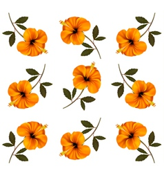 Pattern of beautiful yellow flowers vector image vector image