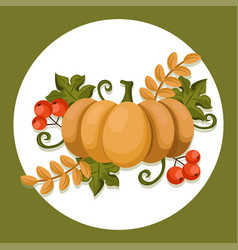 pumpkin autumn icon flat style harvest season vector image