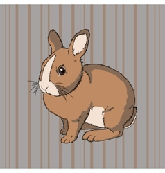 Fluffy brown sitting rabbit vector