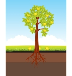 Aple tree with horse vector