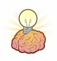 brain light bulb vector image