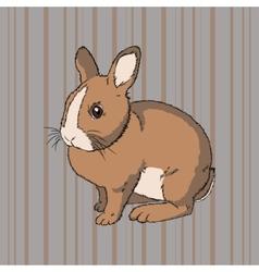 Fluffy brown sitting rabbit vector
