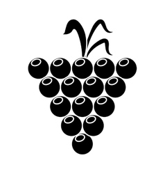 Grape grown organic fruit nature silhouette vector