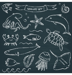 Sealife chalkboard set 1 vector image vector image