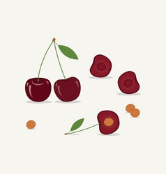 Cherry Flat Icon vector image