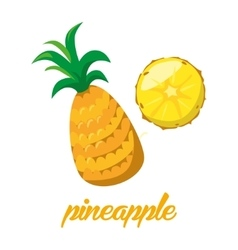 Pineaple fruits poster in cartoon style depicting vector image vector image