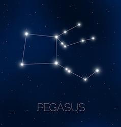 Pegasus constellation in night sky vector image vector image