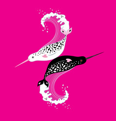 graphics of narwhals vector image
