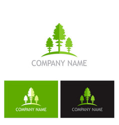 green pine tree logo vector image
