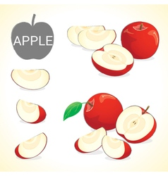 Set of apple fruit in various styles vector
