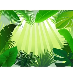 Nature forest background vector